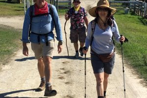 Great Noosa Trail Walk
